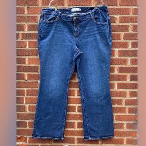 Torrid Boot Cut Plus Size Stretch Jeans 26